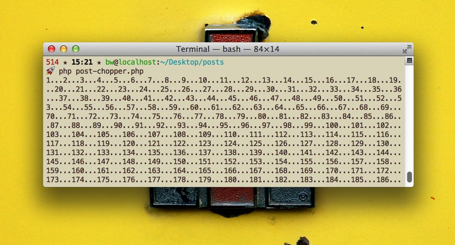 Terminal output.