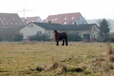 """Sights near Siegelbach"""